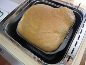 15.4.25焼きたてパン