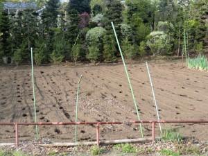 15.5.1畑の土