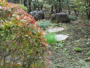 15.11.22庭の紅葉