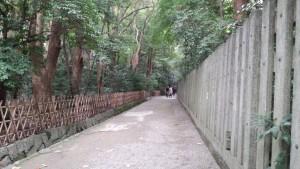 15.11.23小津道